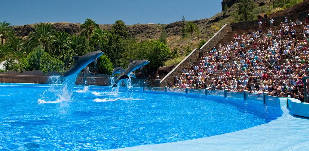 Palmitos Park – Maspalomas - Gran Canaria guide l Få den bedste rejse til Gran Canaria her!